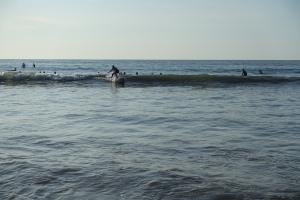 A surfer newbie catches a wave!